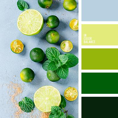 правила удачного применения цвета